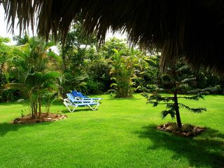 Las Terrenas villa photo - View to the Garden.