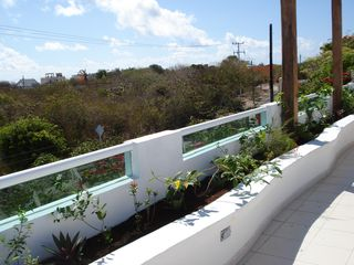Isla Mujeres house photo - Rooftop terrace planter (plants much fuller and with flowers since this picture)