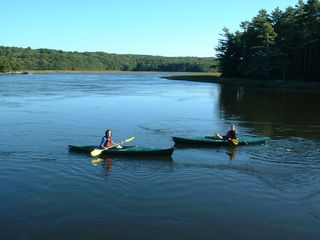 Georgetown cottage photo - Kayakers Enjoying the Beauty and Tranquility of the Back River