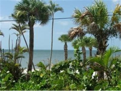 Fort Myers Beach cottage rental - View from porch