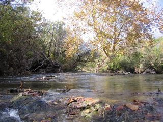 Lampasas house photo - Autumn foliage on Sulfur Creek.