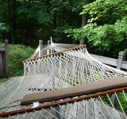 Greensboro house photo - Hammock out on the deck, great place to relax & enjoy North Carolina surrounding