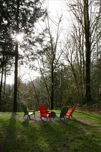 Mount Baker chalet rental - Great firepit with incredible mountain views. Enjoy star lit sky at night.