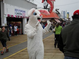 Wildwood condo photo - The Easter Bunny visits the Wildwood Boardwalk!