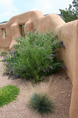 Santa Fe cottage photo - Adobe wall surrounding courtyard garden