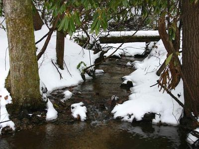 Stream on property in winter