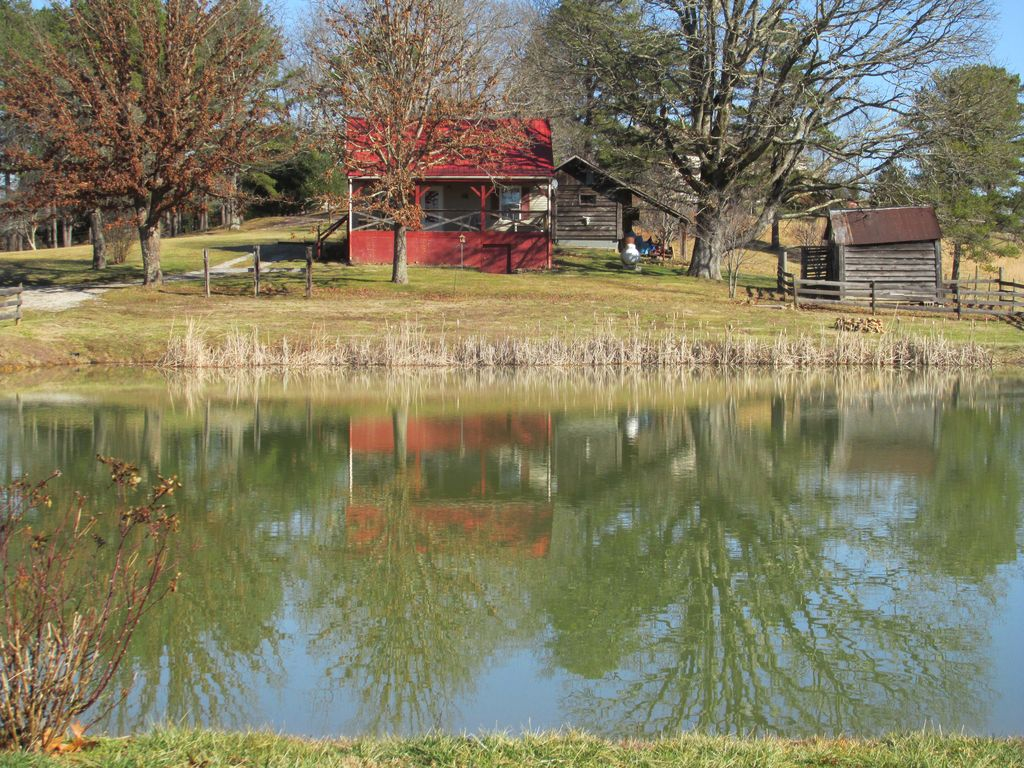 Bluegill cottage countryside cottage pond in back yard for Sunfish in a backyard pond