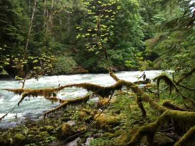 Nooksack River from Private Snowline Trail
