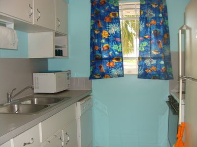 Newly Renovated Kitchen with Tropical Decor