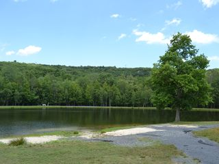 Bushkill house photo - The Lake, half mile away
