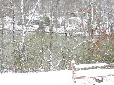 Just below the cabin facing the lake.  Our winters views are wonderful!