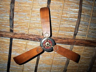 DETAIL OF BELLE EPOQUE WORKING CEILING FAN
