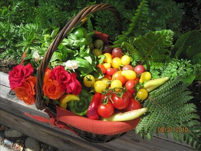 From our bountiful garden to your plate