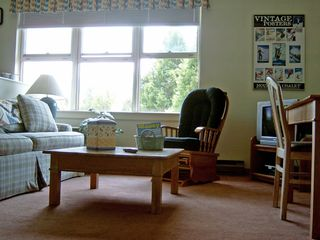 Waterville Valley condo photo - Living Room View