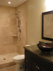 Guest Bathroom with Travertine Shower