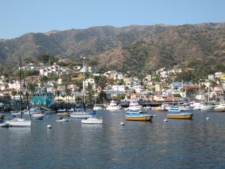 Catalina Island condo photo - A View of Avalon Bay