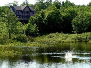 West Wardsboro house photo - Our friendly beaver makes a splash and we hope you enjoy your time here too!