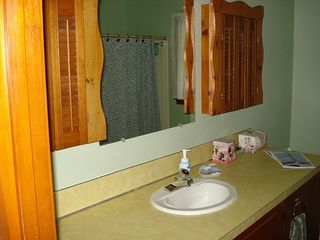 South Yarmouth house photo - Downstairs Bathroom, full-size tub/shower & plenty of space