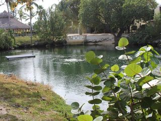 Key Largo condo photo - Our lovely lagoon