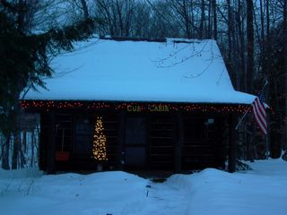 Mackinaw City cabin photo - Winter day at the Cub Cabin!
