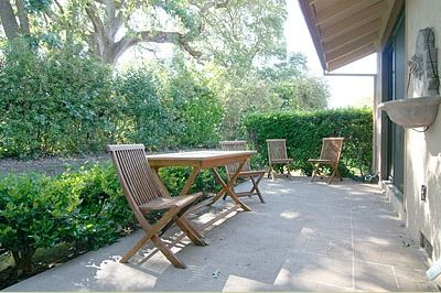 Back Patio with Heritage Oak in background