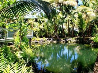 Pahoa cottage photo - Other side of the large private pond