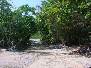 Cayman Brac house photo - very private driveway with gate - house is not exposed to road