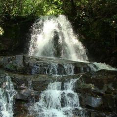 Pigeon Forge cabin photo - Grotto Falls along Roaring Fork Motor Road in Gatlinburg. Short hike in worth it