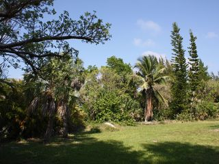 Sanibel Island house photo - Gardens of around one acre