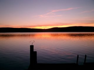 Point Reyes Station cottage photo - Pink Sunset... view from the dock