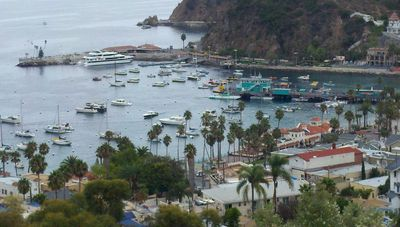 Come to Catalina Island and Experience Paradise