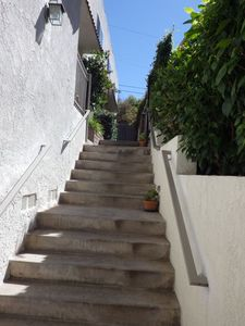 Just one gentle flight of steps lead from the driveway to your front door