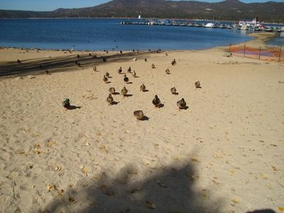 Walk to Gibralter landing - Big Bear Lake
