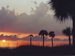 Madeira Beach condo photo - Enjoy the beautiful sunsets