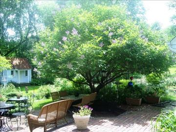 Minnetonka Charmer brick patio lilac tree