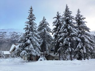 Girdwood lodge photo - winter