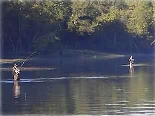 This great fly fishing is 2 minutes from our front door