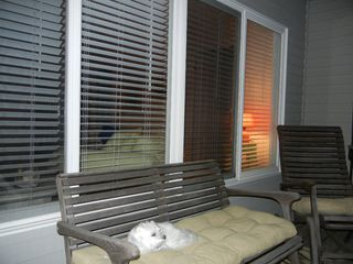 Harvey Cedars house photo - .My puppy is not included