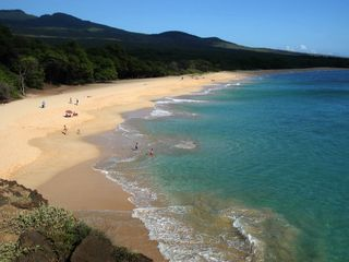 Kihei condo photo - Makena Beach - 12 Minute drive from the Maui Banyan