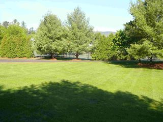 North Woodstock townhome photo - Large sunny backyard