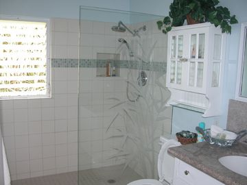 Large, etched glass walk-in shower with rain showerhead
