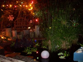 Seagrove Beach house photo - The Tropical Koi Pond~Nightime Veiw: Magical!