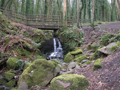 County Londonderry house rental - Waterfall in forest walk.