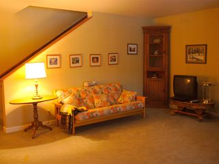 Durango house photo - Lower Level Family Room
