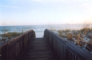 Orange Beach condo photo - Boardwalk to the beautiful beach