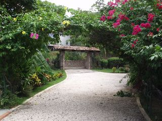 Playa Flamingo cottage photo - Lush Greenery Surrounds the Front Gate and Drive