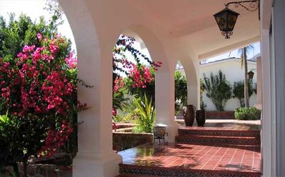 Bougainvillea lined terrace leading to the pool.