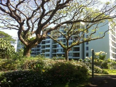 Hilo condo rental - mauna loa shores it set in lush tropical area