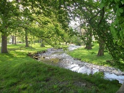 Hendwr's wooded driveway and stream