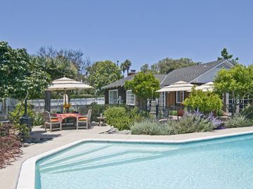La Jolla house rental - Huge Back yard with Pool - Huge back yard with pool, child proof fence, lots of outdoor dinng options, fruit trees and a zip line for the kids!